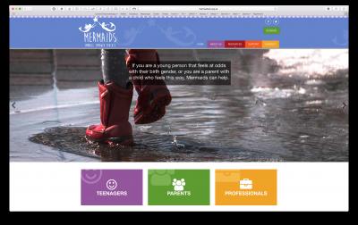 Link to Mermaids website